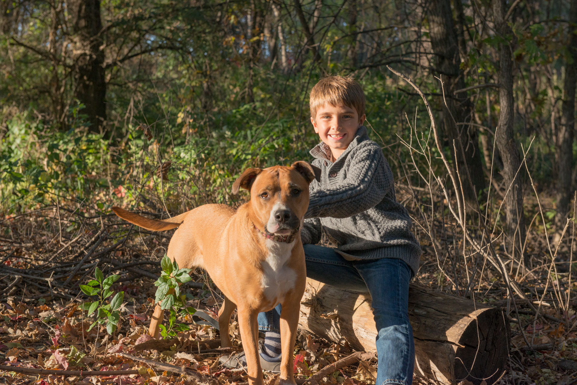 Family photography should include all members of the family. Child photography and pets done by Addie Lane Studios in Minneapolis, MN